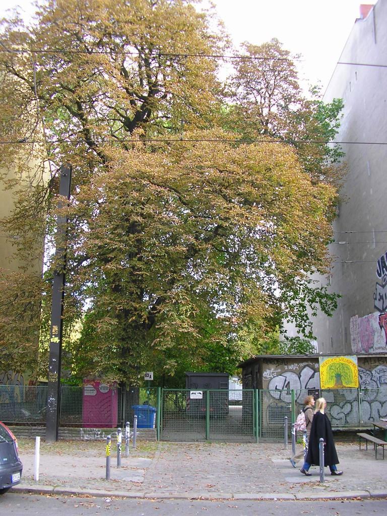 """Andieser Stelle befand sich das ebenfalls durch Kriegseinwirkung zerstörte Schulungslokal """"Rosenthaler Platz"""". Die Bezeichnung ist allerdings nicht korrekt. Aus Sicherheistgründen wurde zumeist die tatsächliche Adresse - Kastanienallee - nicht angegeben."""